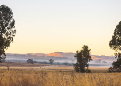 fog-lifting-from-fields-beaudesert-to-boonah